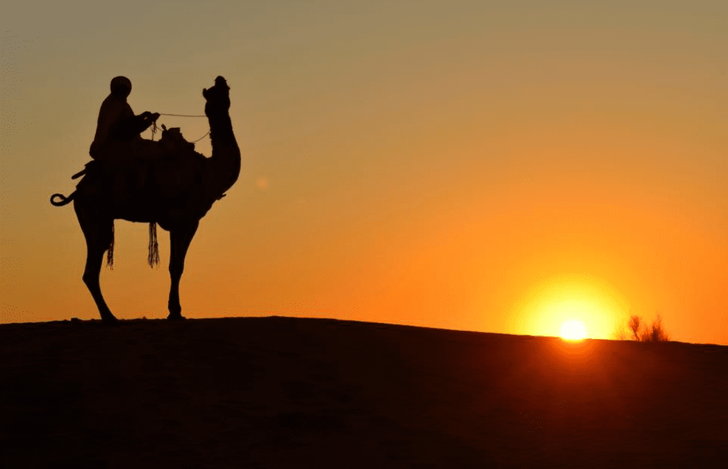 Hide The Camel To Get Things Done